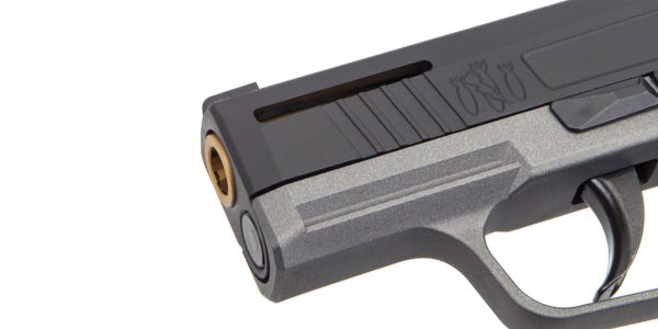 Slide is ported on this custom Sig Saeuer P365 Nitron, but really?