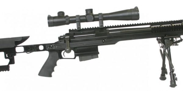 Armalite AR-31 sniper rifle and competition rifle